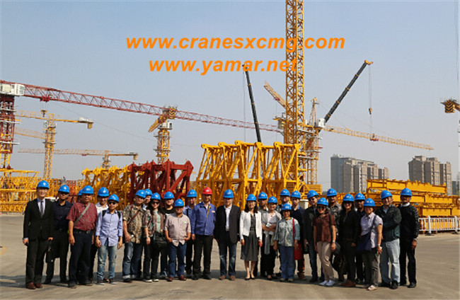 Customers from Indonesia order XCMG tower crane
