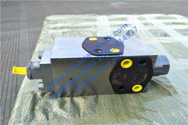 balance valve (2).jpg