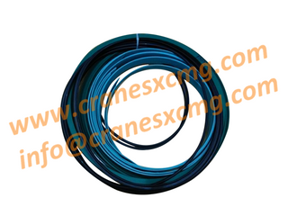 XCMG crane parts-Luffing cylinder seal